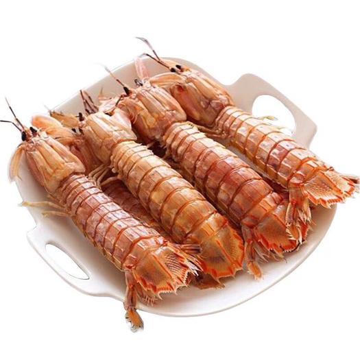 山東省威海市乳山市冷凍皮皮蝦 冰鮮熟凍皮皮蝦五斤裝產地直發
