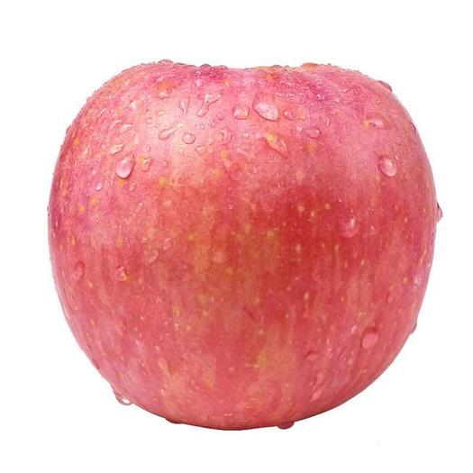 遼寧省葫蘆島市興城市 脆甜可口富士蘋果