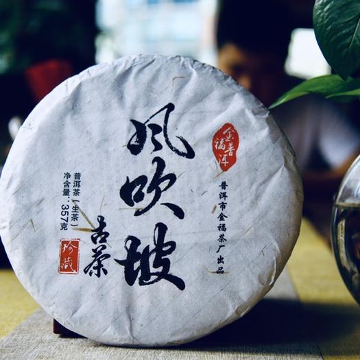 云南省普洱市思茅區景邁古樹茶 2019年頭春古樹茶金福風吹坡