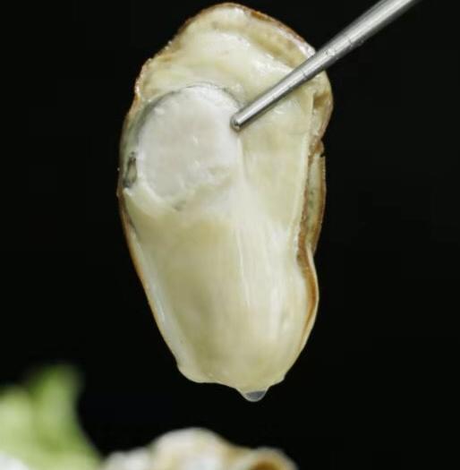 山東省威海市乳山市山東乳山牡蠣 正宗乳山生蠔肉凍品一袋一斤裝大量批發一件代發