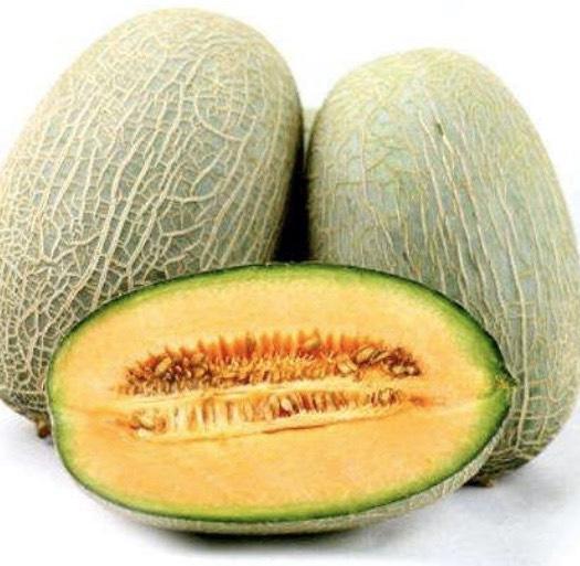 新疆维吾尔自治区哈密市伊州区 新疆哈密自家大棚哈密瓜,脆甜