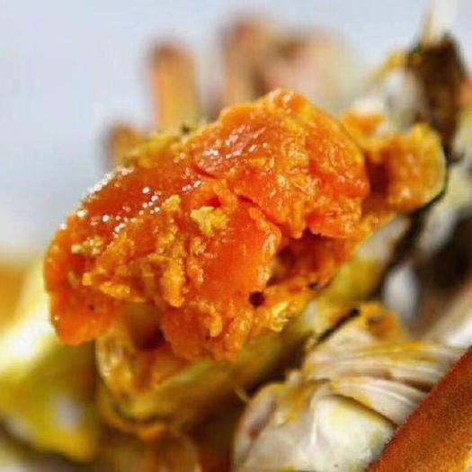 上海市崇明區 正宗崇明清水大閘蟹。殼薄,肉嫩。味道極其鮮美!