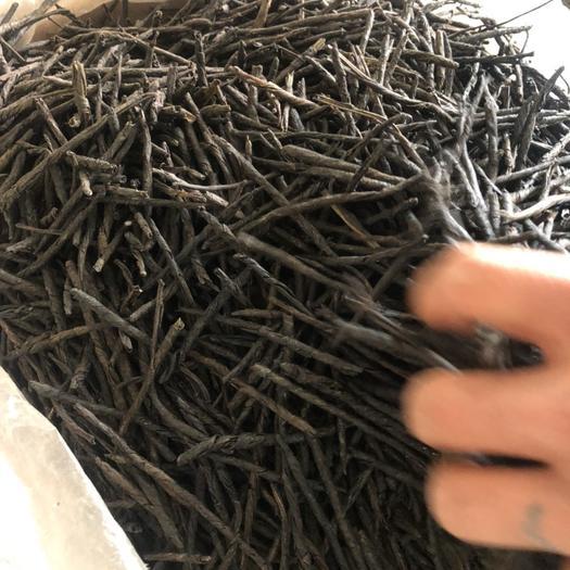 安徽省亳州市谯城区 苦丁茶正品 冷背药材 一公斤起卖不包邮
