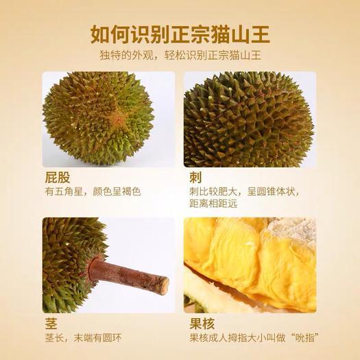 江苏省扬州市宝应县 好吃的榴莲