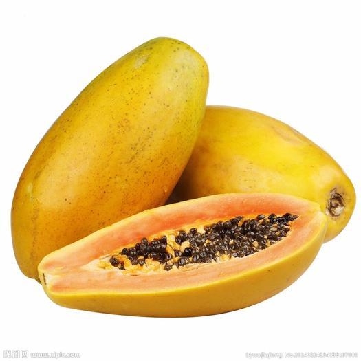 广东省湛江市雷州市 海南红心牛奶木瓜青木瓜大新鲜水果