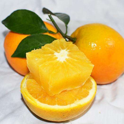 江西省赣州市信丰县 赣南脐橙原产地直供