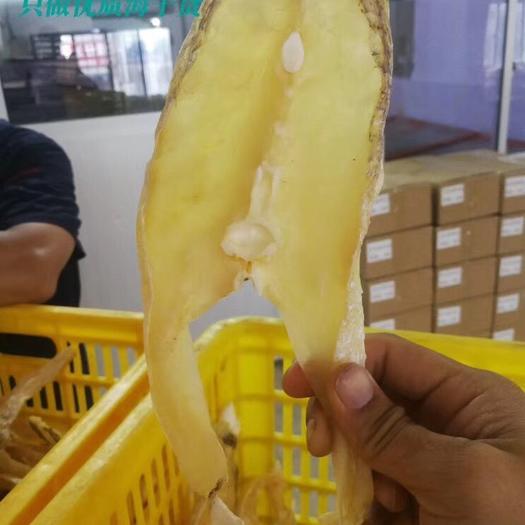 广西壮族自治区北海市海城区马友鱼 产于广西北海深海鱼干