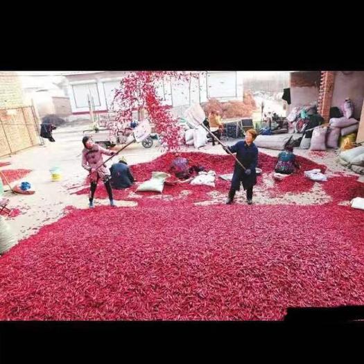 山西省临汾市襄汾县 三千亩干货三樱椒出售