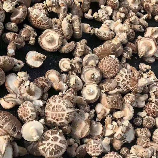 湖北省荆门市京山市 大洪山区干香菇,个头均匀,香味扑鼻,欢迎各位老板订购