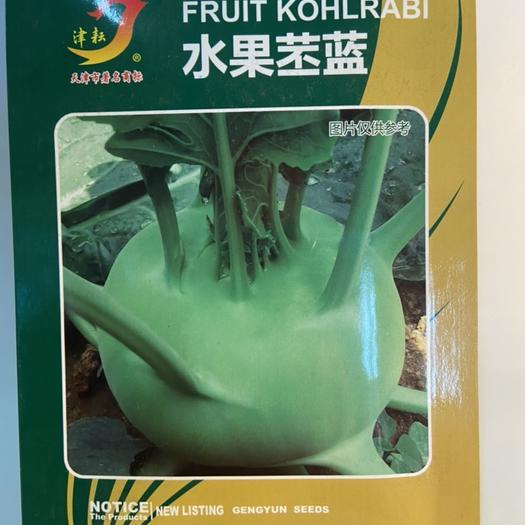 天津市西青区 水果苤蓝种子,球型扁圆,球色鲜绿,球面光滑,叶片少,叶痕浅,