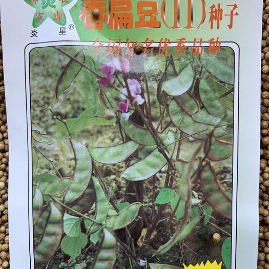 江西省赣州市章贡区 春扁豆 早熟红扁豆种子 产量高经济效益好 量大价优