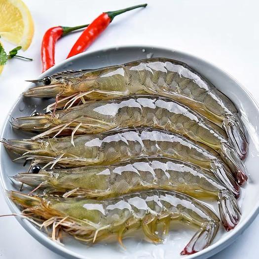 上海市宝山区 厄瓜多尔白虾