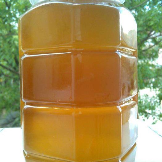 四川省广安市岳池县 家养 纯天然 无污染 纯蜂蜜 无添加