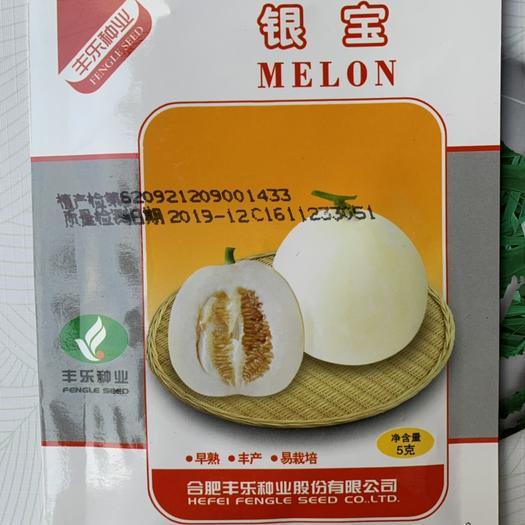 江西省赣州市章贡区白沙蜜甜瓜种子 银宝 丰乐种业 薄皮白皮白肉超甜甜瓜 量大价优
