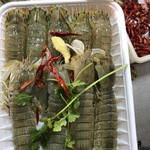 辽宁省丹东市东港市虾爬子 酱皮皮虾(虾爬)自家生产,清仓大甩卖,便宜到你诧异