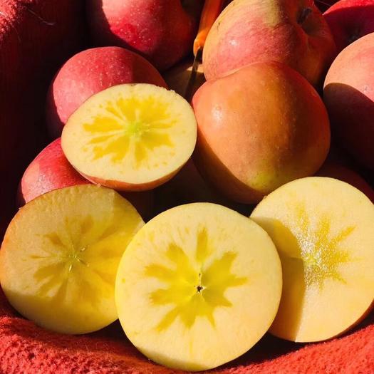 陜西省寶雞市眉縣 新疆阿克蘇冰糖心蘋果,精品,禮盒包裝,支持一件代發!