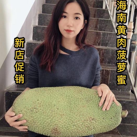 海南省万宁市万宁市海南菠萝蜜 特价精品果大果本地大型收购点批发发货速度快合适水果店拿货