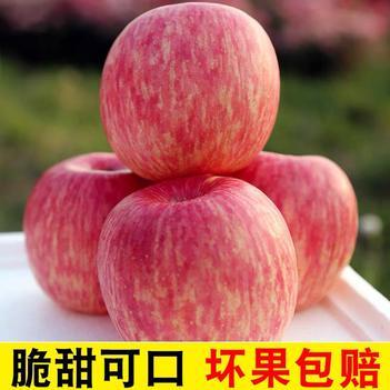 陜西洛川紅富士蘋果水果新鮮當季整箱10斤應季脆甜包郵