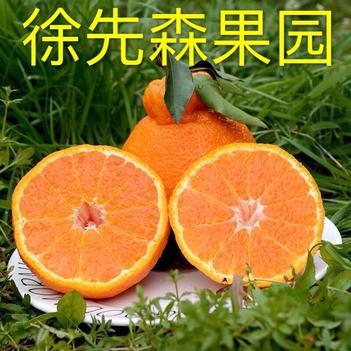 不知火 四川丑橘丑柑丑八怪10斤一件代发支持各大平台