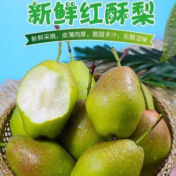 【包邮】热销新鲜梨子水果红香酥梨源自库尔勒香梨10斤新鲜