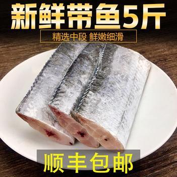 【特價包郵】舟山帶魚段東海新鮮帶魚冷凍海鮮中段帶魚批發包郵