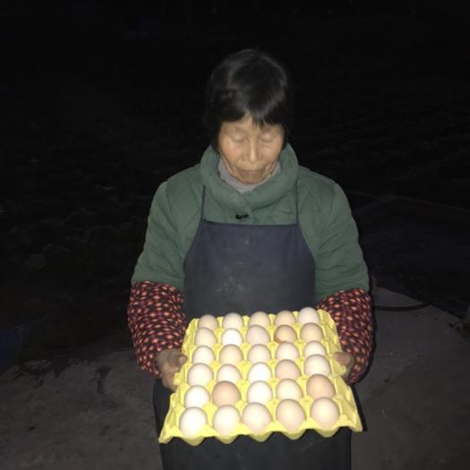 重慶市榮昌區普通雞蛋 食用 箱裝