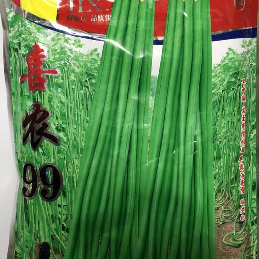 广东省梅州市平远县 洪鑫喜农99翠绿长豆角种子