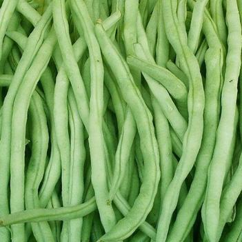 白扁豆 因疫情原因,不得摆摊售卖,只能通过网络渠道销售