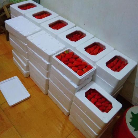 北京市房山区 自家种植的丹东九九香草莓