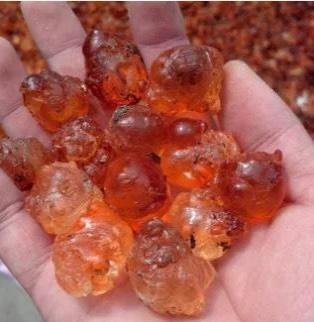 食用桃膠 24個月以上 散裝 本品不能代替藥物