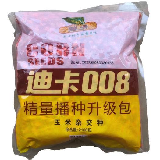 廣東省清遠市英德市迪卡008玉米種子 高產玉米雜交種子迪卡008抗病硬玉米土玉米雞吃玉米大棒軸細粒
