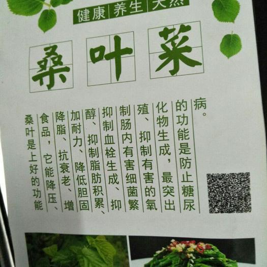 廣東省佛山市南海區速凍桑葉菜