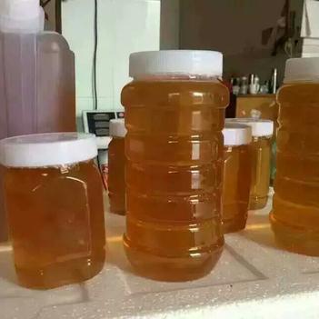 荔枝蜜 純正果園自養蜂,濃度41 ,天然保健,荔枝花香