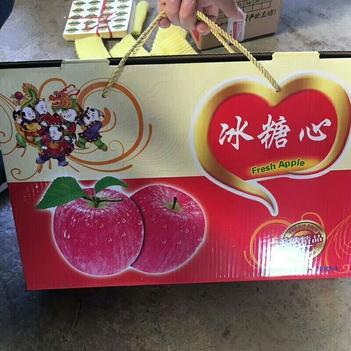 紅富士蘋果 紙+膜袋 條紅 85mm以上