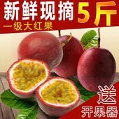 紫香一号百香果 60 - 70克