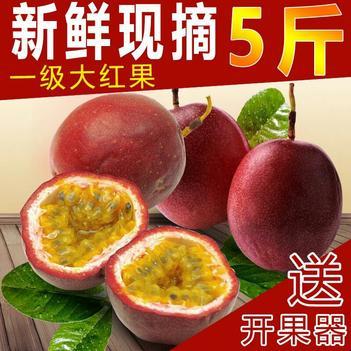紫香一號百香果 60 - 70克