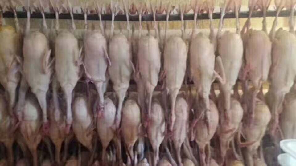 [鹅肥肝批发]鹅肥肝 价格120元/斤