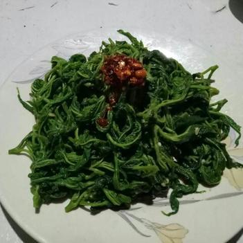 速凍桑葉菜