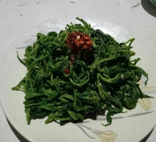 陜西省西安市臨潼區速凍桑葉菜