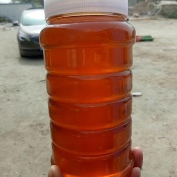 棗花蜜 塑料瓶裝 95%以上 1年