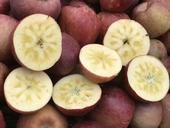 冰糖心蘋果 光果 片紅 70mm以上