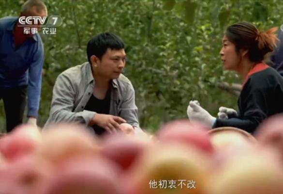 CCTV-7专题纪录片《中国乡村变迁记》播出 惠农网为乡村振兴注入长足发展动力