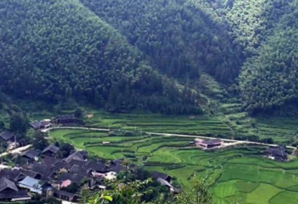 中华人民共和国农业农村部 | 洞口电商能人李艳:返乡创业带领乡亲脱贫致富