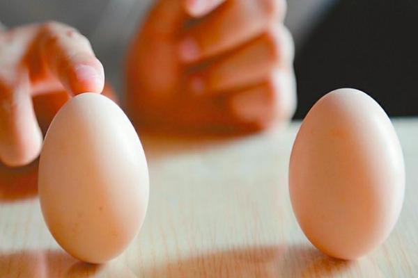 为什么立春可以立鸡蛋?怎么立?