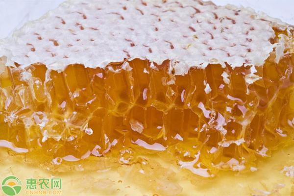 2020蜂蜜批发价