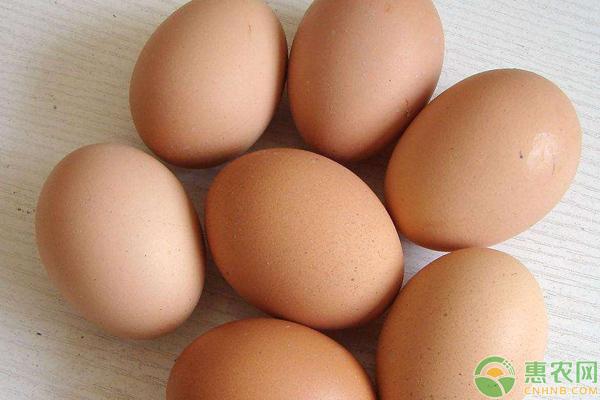 鸡蛋价格上涨!会持续多久?7月12日各地区鸡蛋价格行情分析
