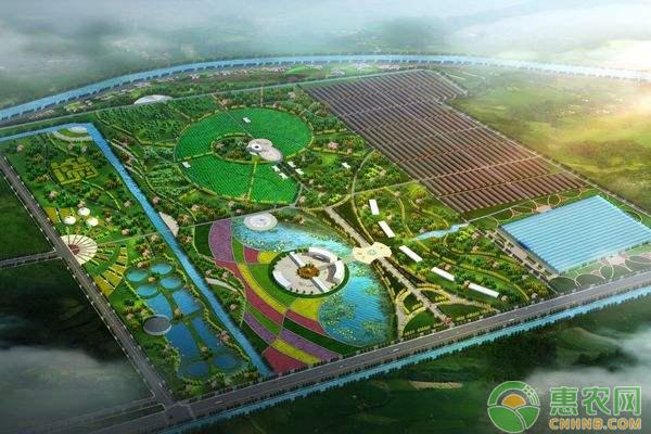 洛龙镇:加强道路建设,发展多元产业,带动贫困致富!