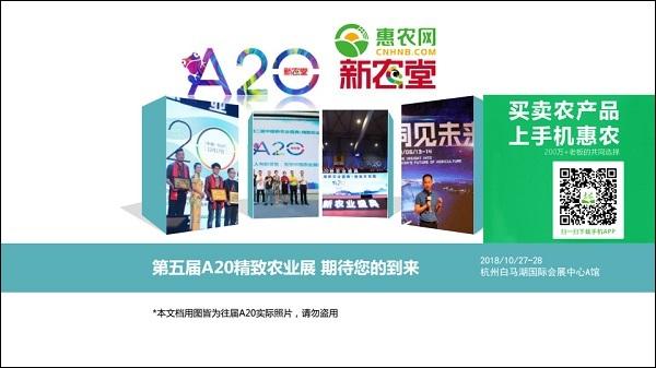 惠农网与A20举办方新农堂携手合作,首次在A20设置惠农网专区