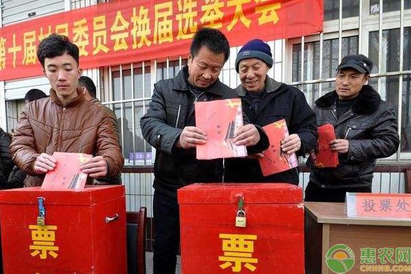 2018村干部选举