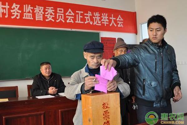 2018村干部选举新规